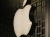 apple-store-i-gigli-vigilia-23