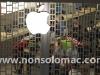 apple-store-i-gigli-vigilia-29