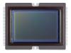 canon-eos-5d-mark-iii-sensore