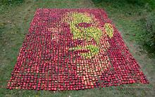 Steve Jobs realizzato con 3500 mele