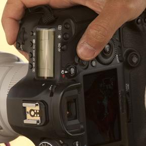 Misteriosa reflex Canon avvistata in Kenya