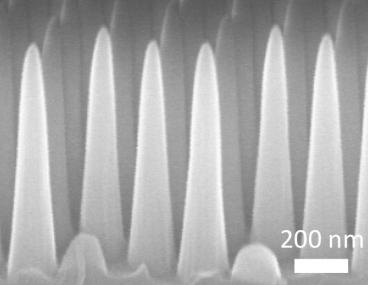 MIT - Immagine ingrandita della nanotexture di superficie del vetro antiriflesso, antiappannamento e autopulente
