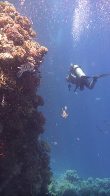 Foto subacquea realizzata con una fotocamera Panasonic Lumix DMC FT-2