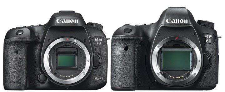Canon EOS 7D Mark II Vs EOS 6D