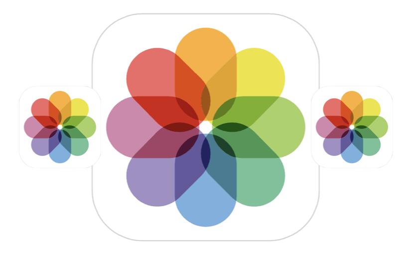 Gestire la cancellazione di foto e video su iOS e iPadOS