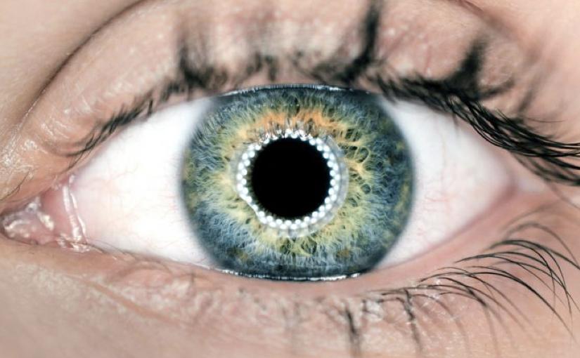 La strada per l'occhio artificiale è avviata